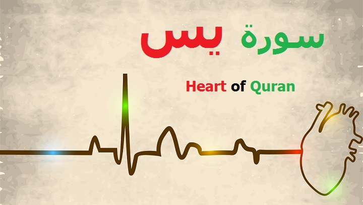 Learn Quran Kids - Heart of Quran